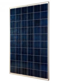 Солнечная панель (модуль) Delta BST 280-24 P