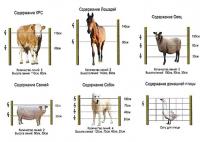 Электропастух на 4 Га 2-х рядный для овец, свиней, коз, КРС